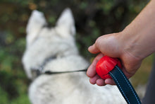 Lead Mate & Leash Bundle - Flat type Lead Mate & Leash