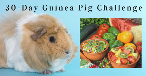 30-Day Guinea Pig Challenge photo
