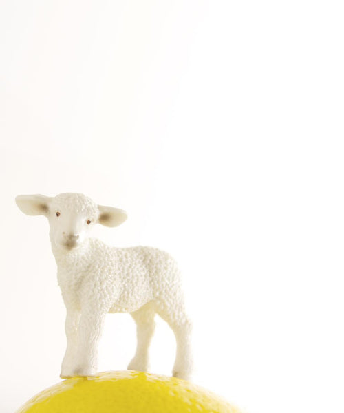 LEMON THE LAMB