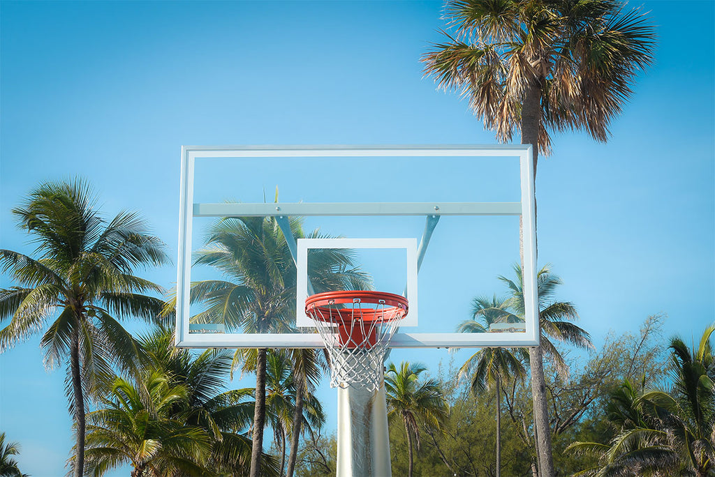 PALM HOOPS