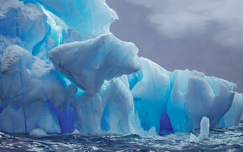DANCO ISLAND ANTARCTICA LIMITED EDITION PRINT