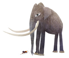 ELEPHANT AND THE ELEPHANT SHREW