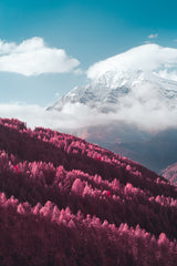 INFRARED ALPS