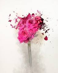ROSE EXPLOSION 3