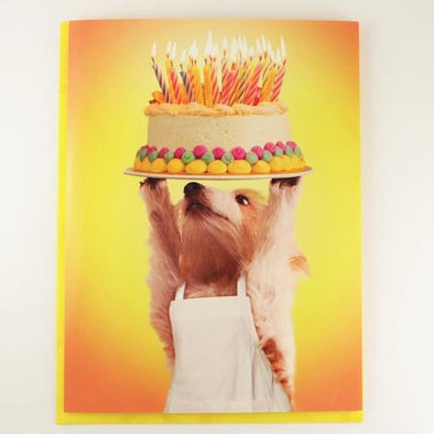 Hope this one outshines them all! Birthday Card