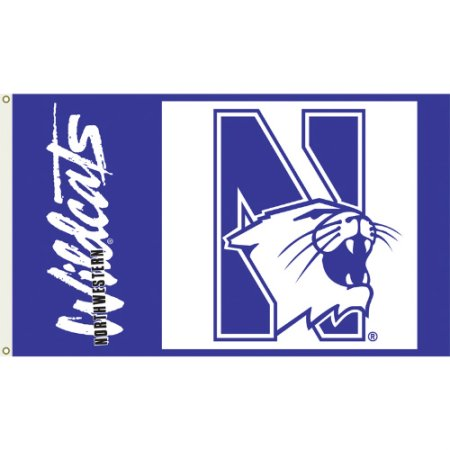 NCAA Northwestern Wildcats 3'x5' Flag