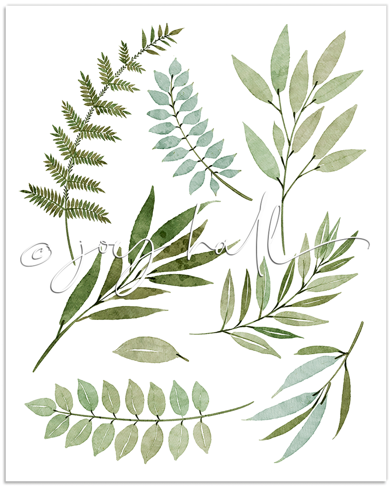 Fresh Greens Botanical Print