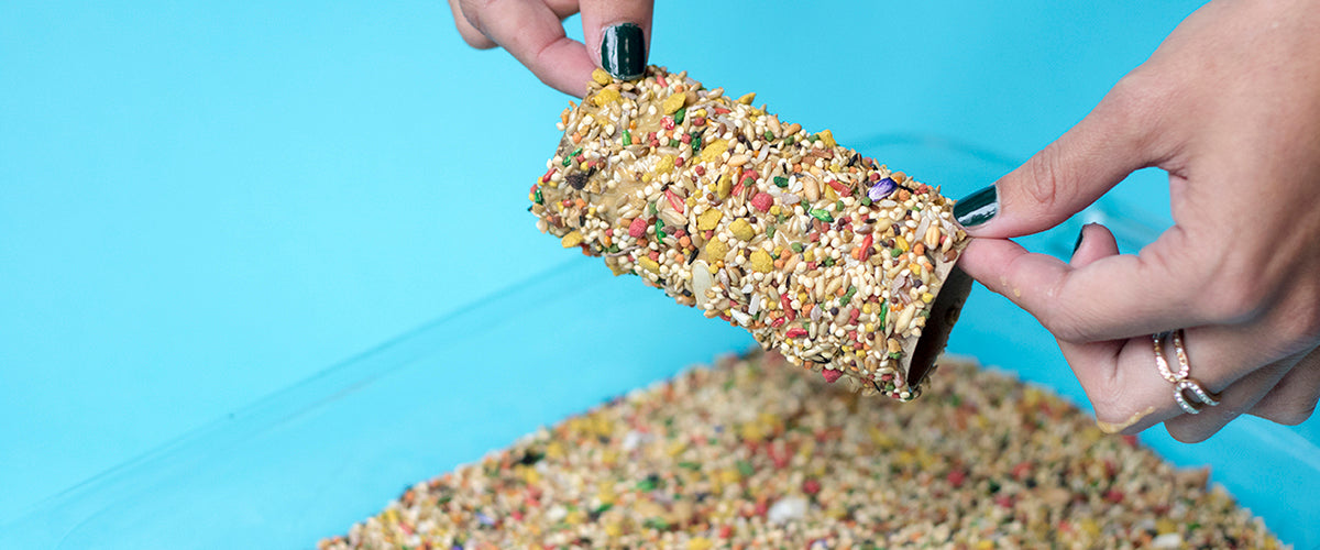 DIY Toilet Paper Bird Feeder