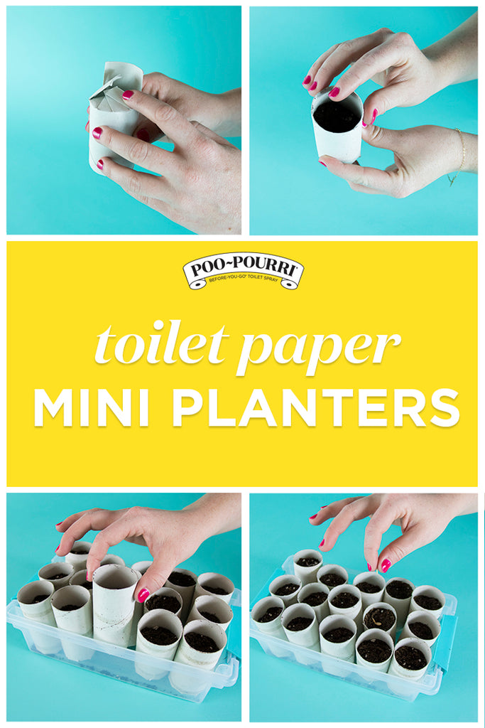 Toilet Paper Planter How To