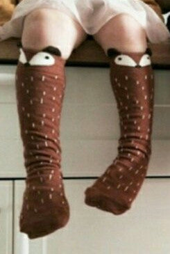 Raccoon knee high socks - Orange