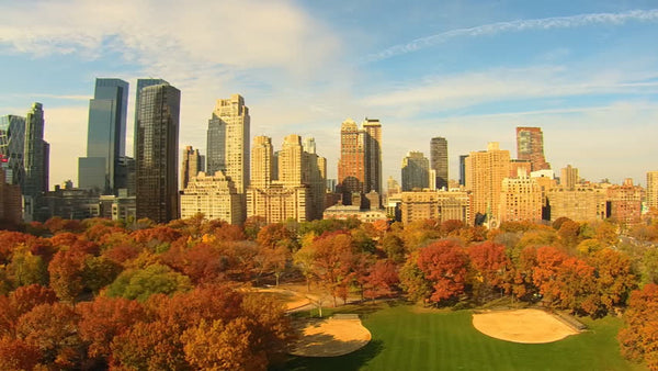 herbst in central park