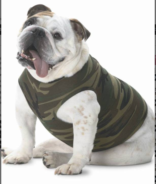 April's Featured Product..... The Doggy Tank
