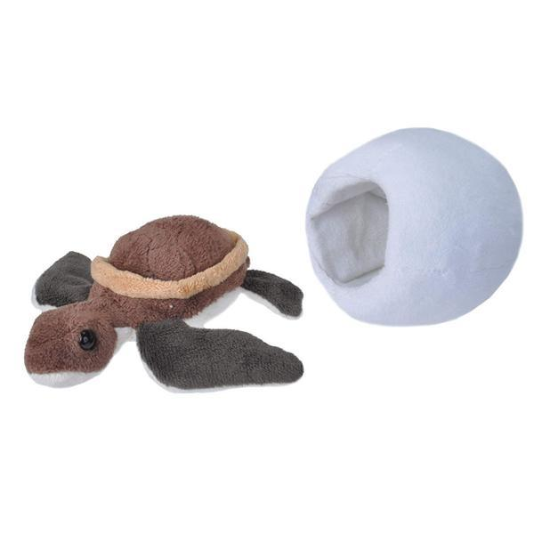 Stuffed Animal - Loggerhead Sea Turtle Hatchling