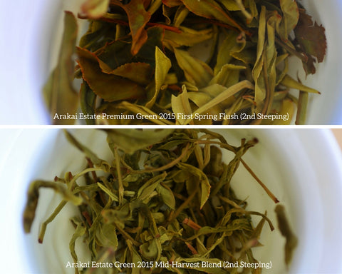 Comparison of Arakai Estate 2015 Green Premium and Mid-Harvest tea