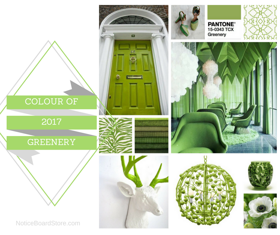 Greenery Pantone Green Colour Trends 2017 NoticeBoardStore