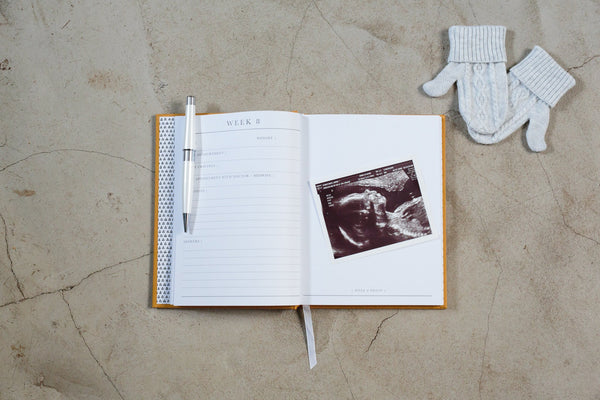 Write To Me | 9 Months - The Beginning Of You Pregnancy Journal