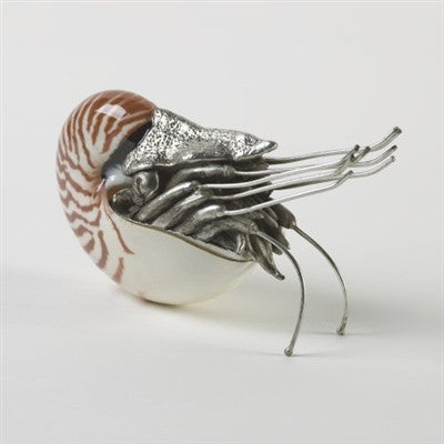Nautilus Shell Sculpture