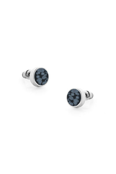 Tutti & Co Polar Earrings Silver