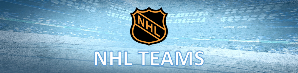 nhl teams banner