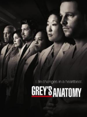 Greys Anatomy Poster 24in x 36in - Fame Collectibles