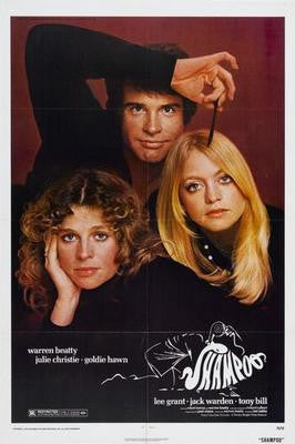 Shampoo Movie Poster 24x36 - Fame Collectibles