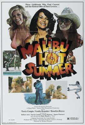 Malibu Hot Summer Movie Poster 24x36 - Fame Collectibles