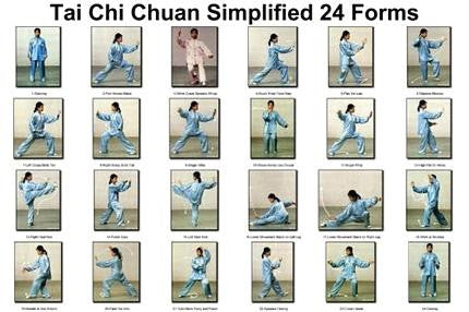 Tai Chi Chuan 24 Forms Poster 24x36 - Fame Collectibles