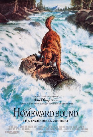 Homeward Bound Movie Poster 24Inx36In Poster 24x36 - Fame Collectibles