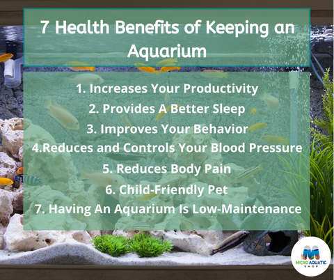 Benefits of Having an Aquarium