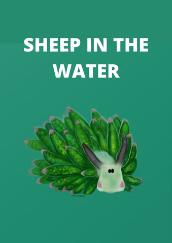 Did you know that there's a sheep in the water?!