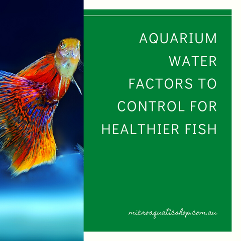 Aquarium Water Factors to Control for Healthier Fish