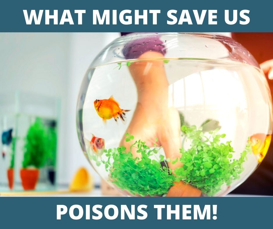 What might save us, poisons them!