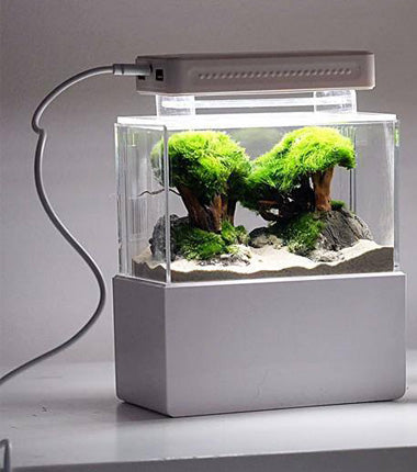 DESKTOP MINI AQUARIUM
