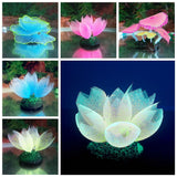 Micro Aquatic Shop Handpicked Artificial Glowing Effect Coral Decoration