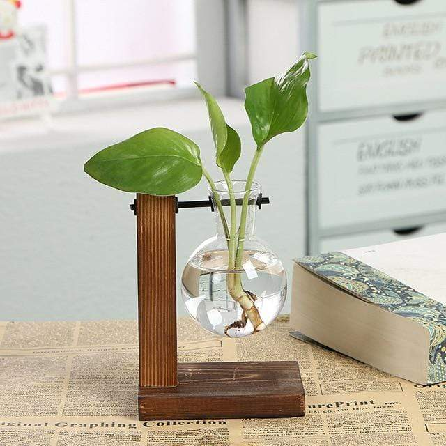 Micro Aquatic Shop Handpicked Single Bottle Terrarium Vase Wooden Frame Decoration