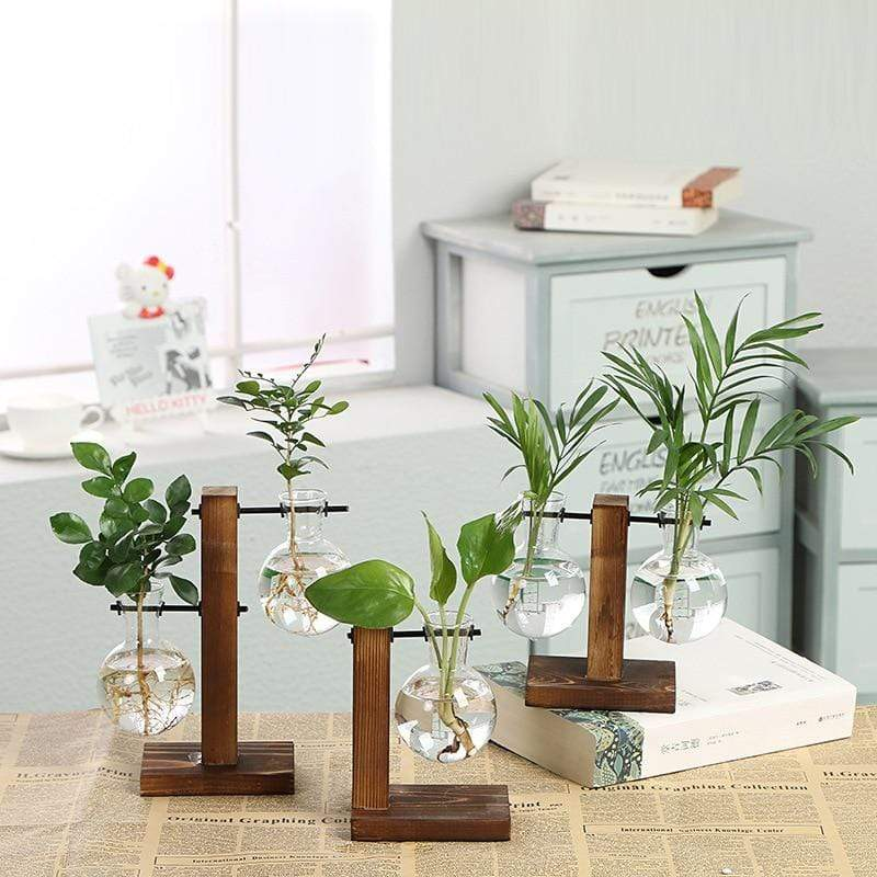 Micro Aquatic Shop Handpicked Terrarium Vase Wooden Frame Decoration