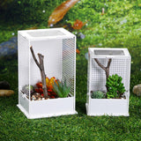 Micro Aquatic Shop Handpicked Transparent Acrylic Reptile Breeding Box