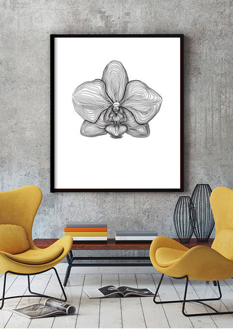 orchid-digital-print-floral-poster