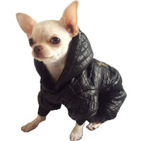 Waterproof Chihuahua Jacket