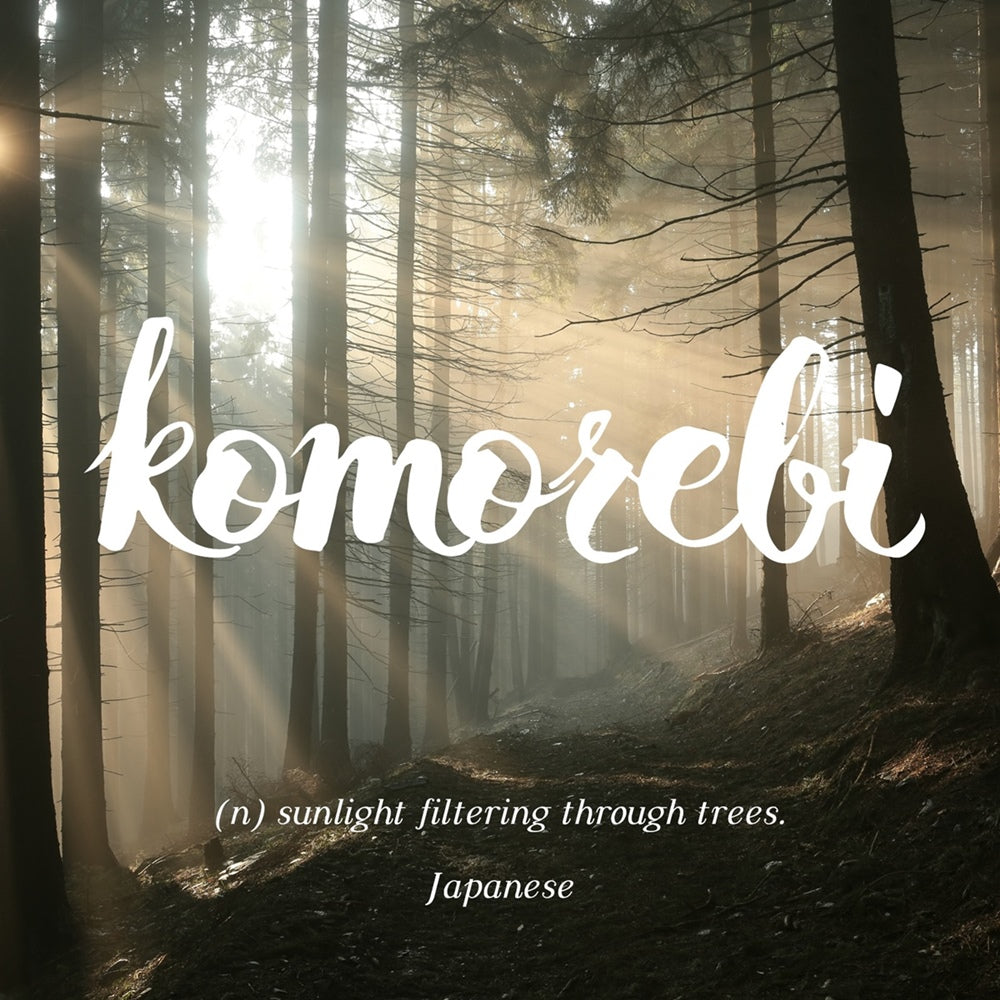 Komorebi - sunlight filtering through trees, LetterNote Joy of Living