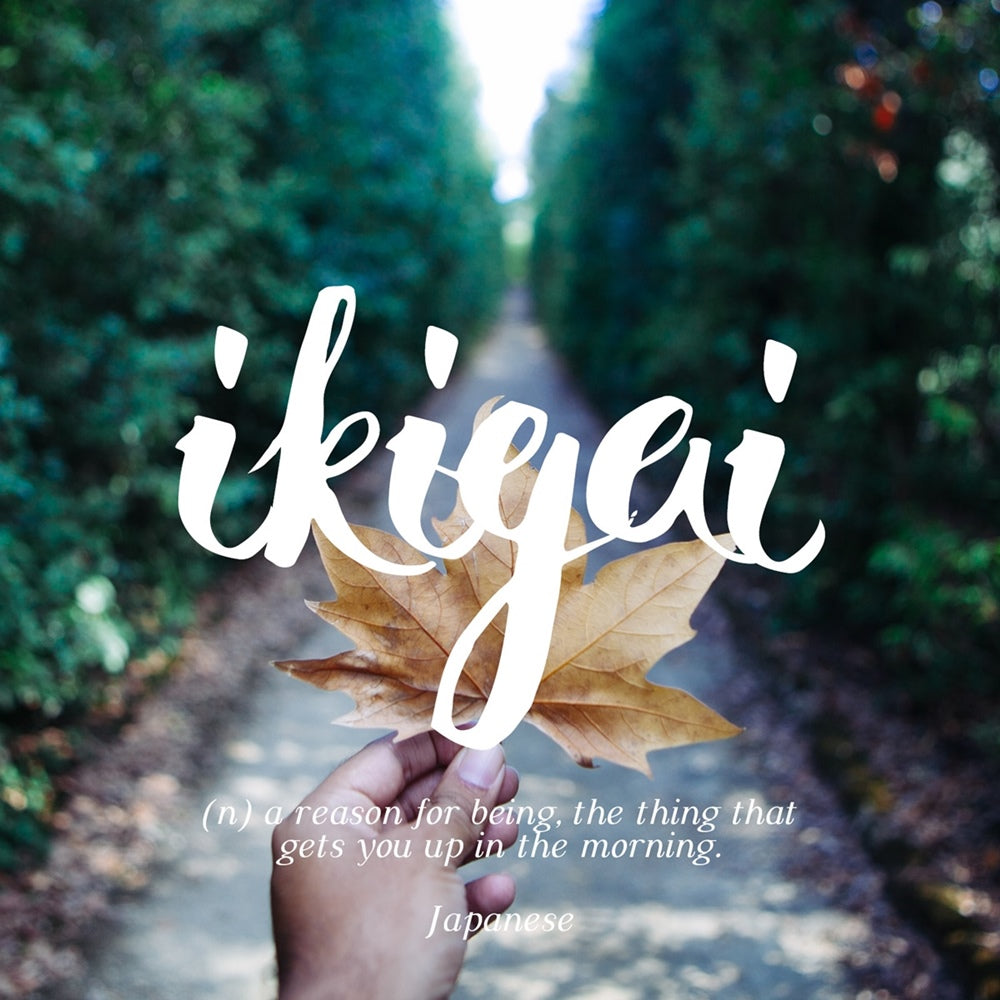Ikigai - a reason for being, that gets you up in the morning, LetterNote Joy of Living