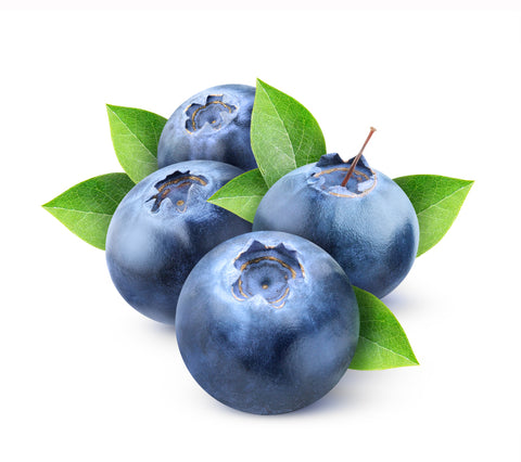 Blueberry Oil