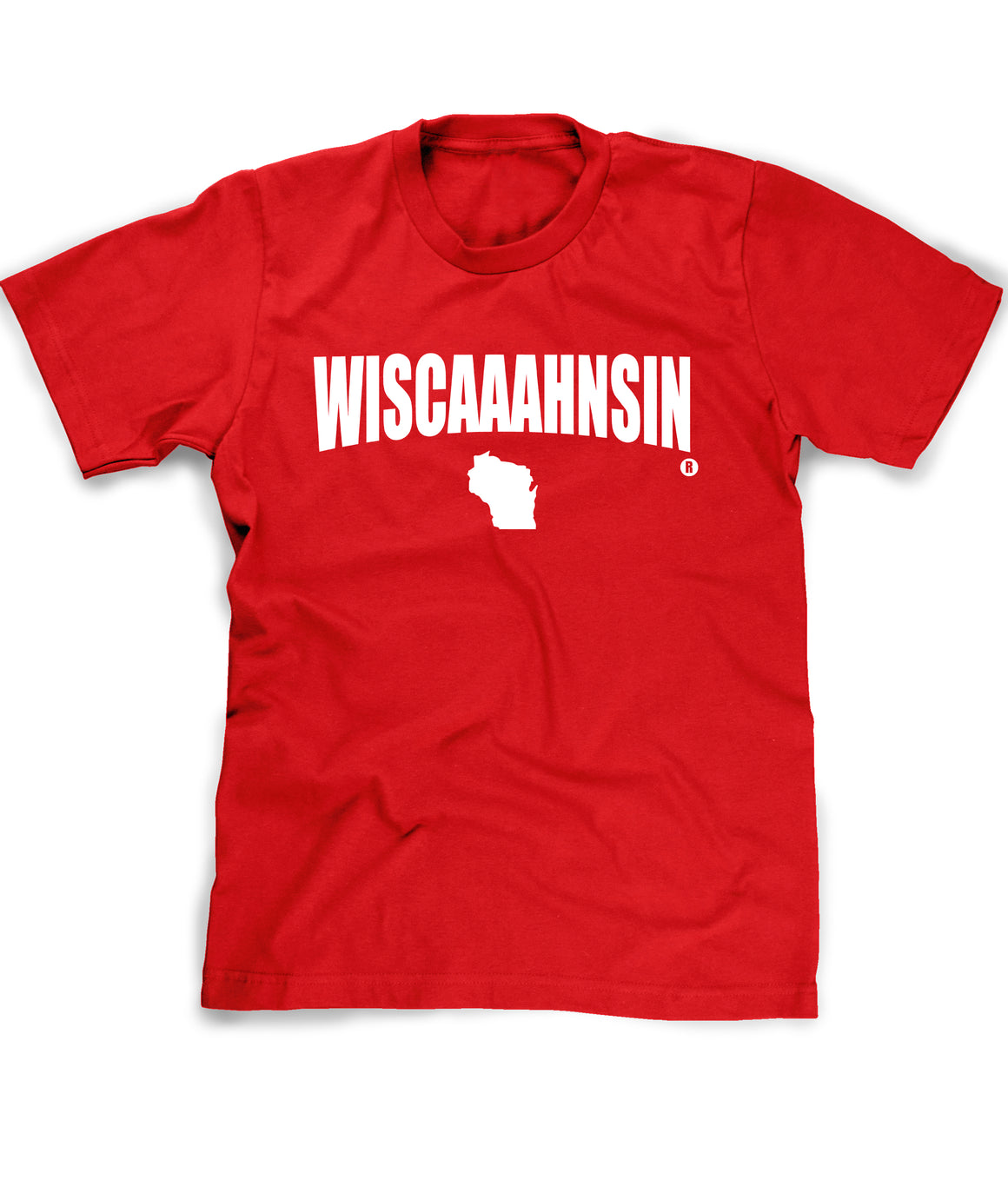 Funny Wisconsin tee shirt on model