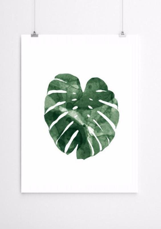 Botanical Prints-Ireland