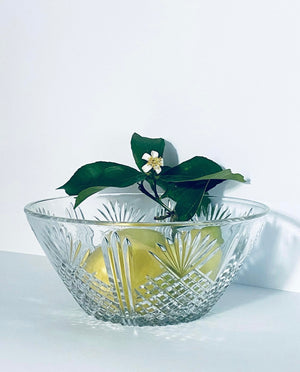ITALIAN GLASS FRUIT-SALAD BOWL
