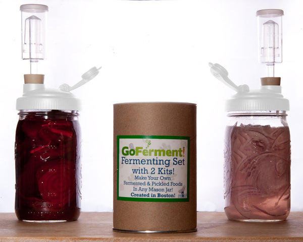 Fermenting Kit w/ Recipe E-book (2 Pack, White)