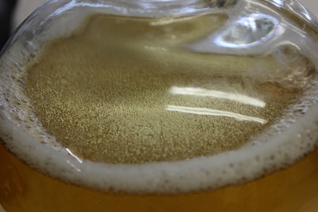 dry yeast pitch