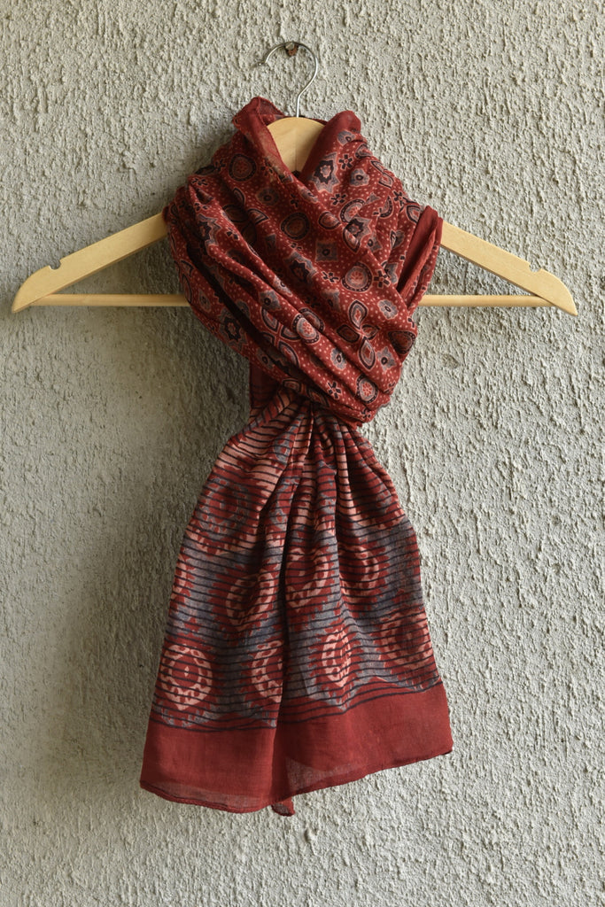 Geometry and Leaves on Red Blue Ajrakh stole