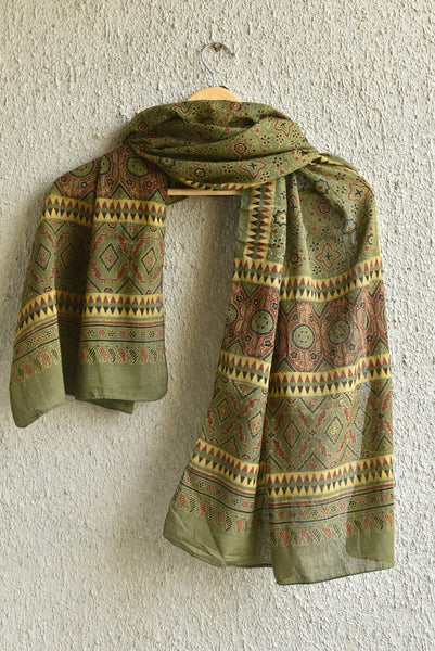 Sky with Temple Print on Green Ajrakh Stole