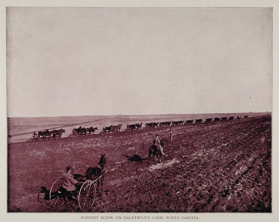 1893 Print Dalrymple Farm North Dakota Wheat Harvest - ORIGINAL HISTORIC AW2 - Period Paper